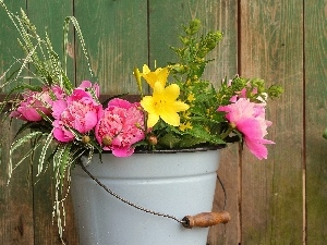 Yellow, Peonies, bucket, Flowers, Pink