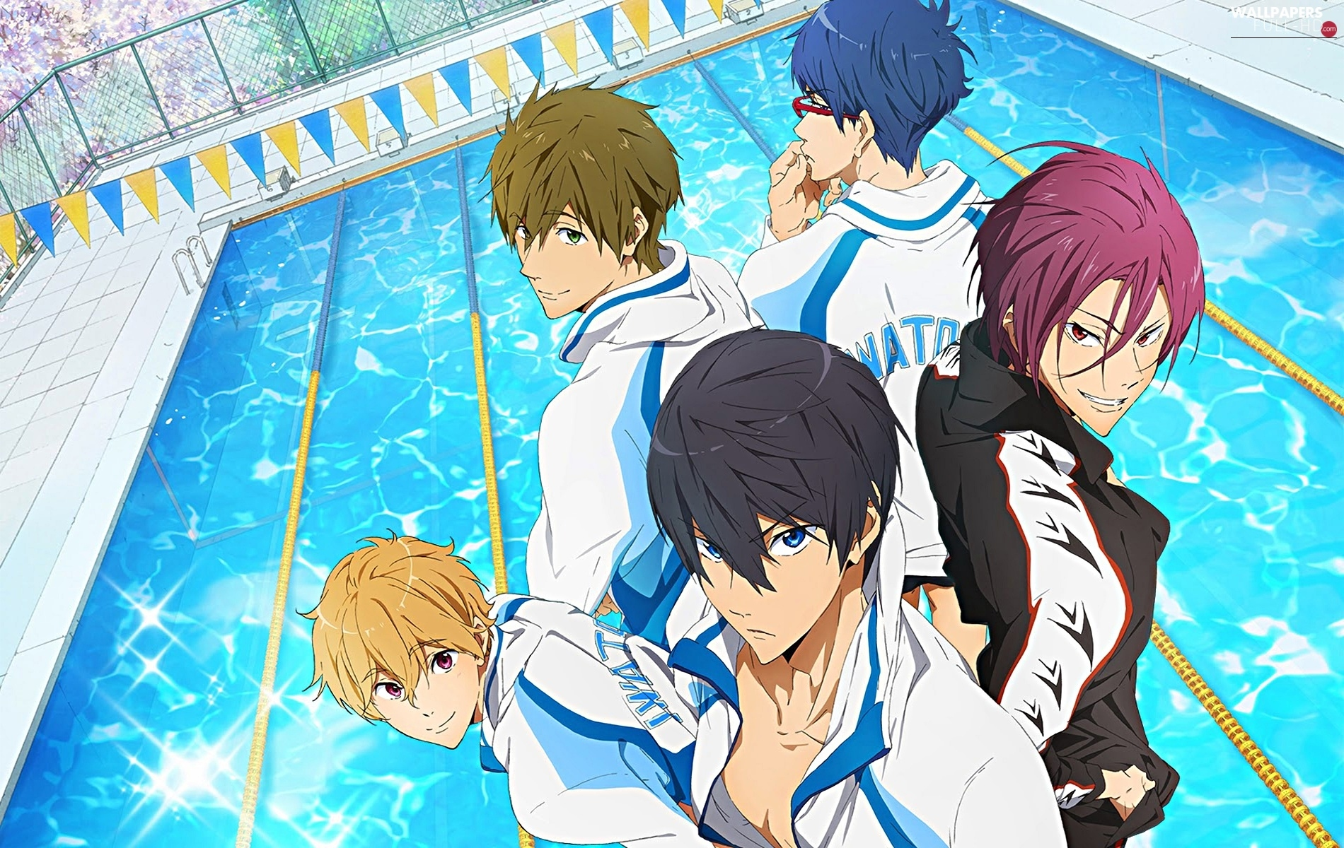 Pool, Anime, Free!, boys, Iwatobi Swim Club
