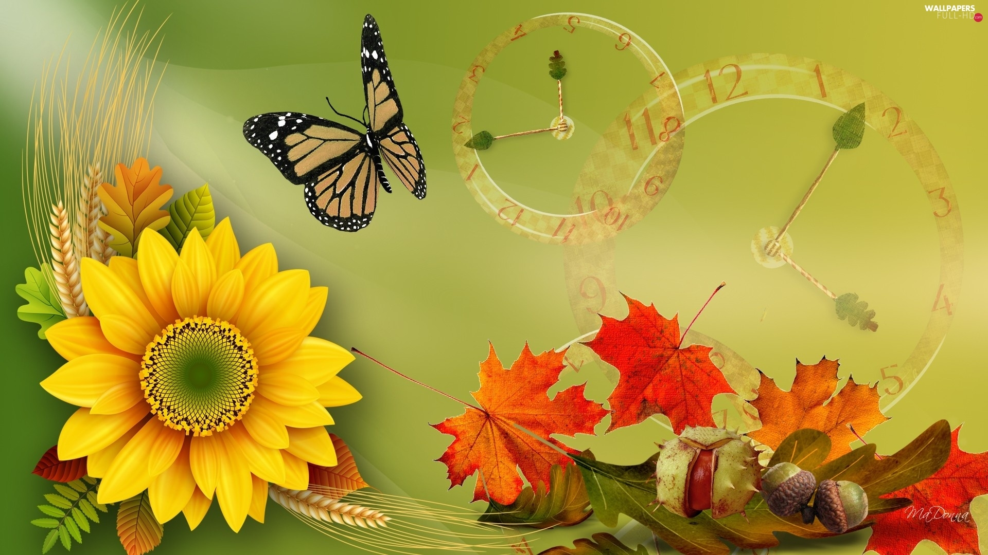 autumn, butterfly, Sunflower, graphics, Leaf