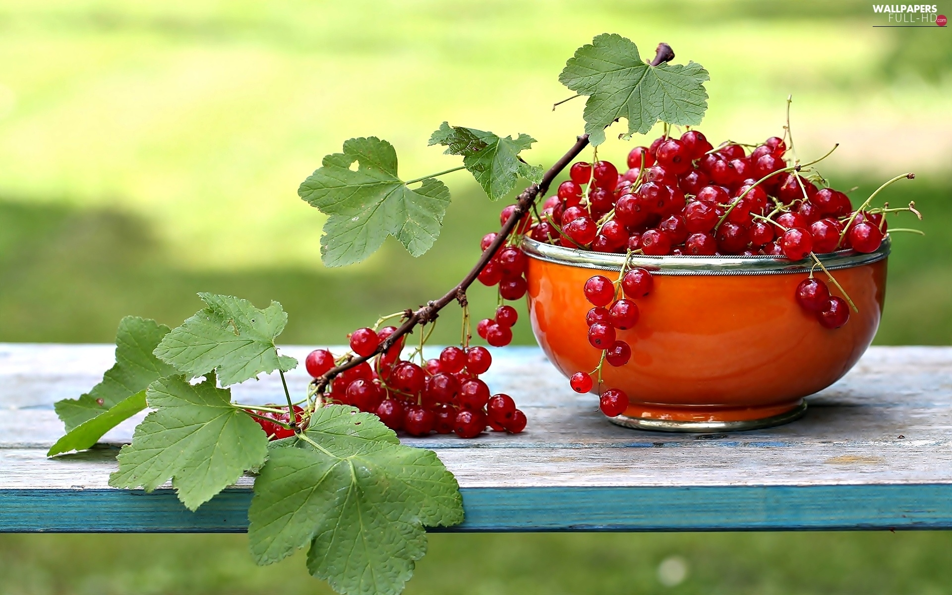 bowl, leaves, red hot, currant