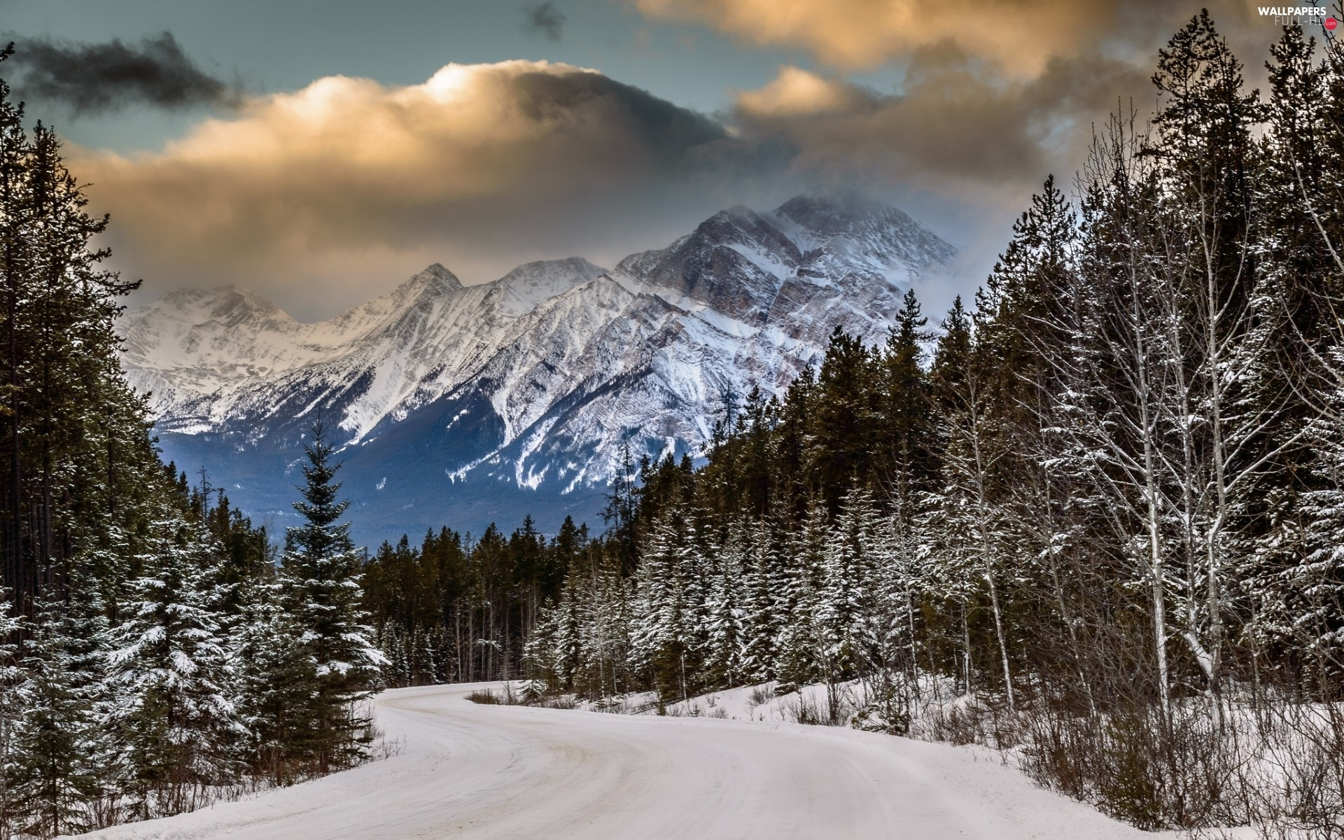 clouds, Way, Mountains, winter, woods