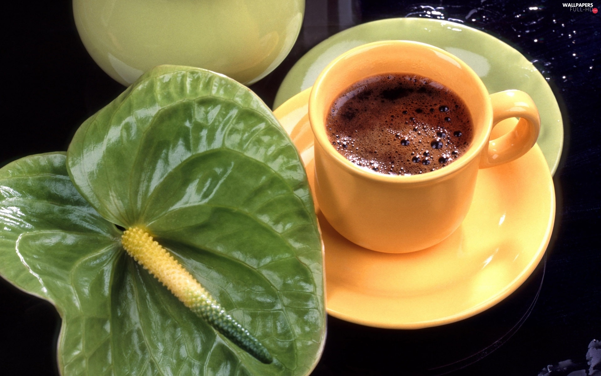 coffee, cup, Anturium, green ones