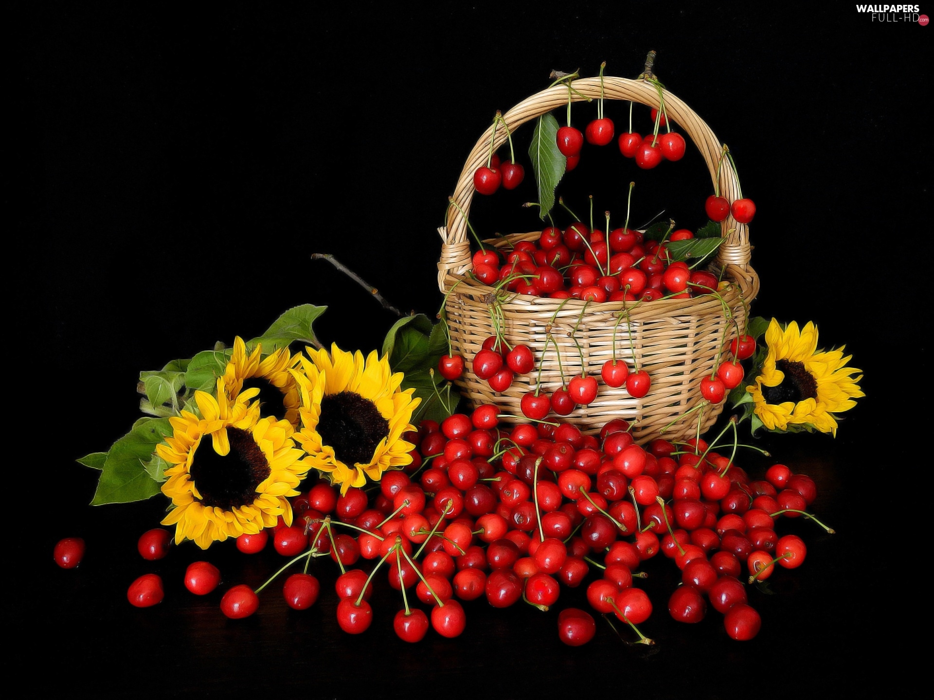 compositions, basket, Nice sunflowers, cherries