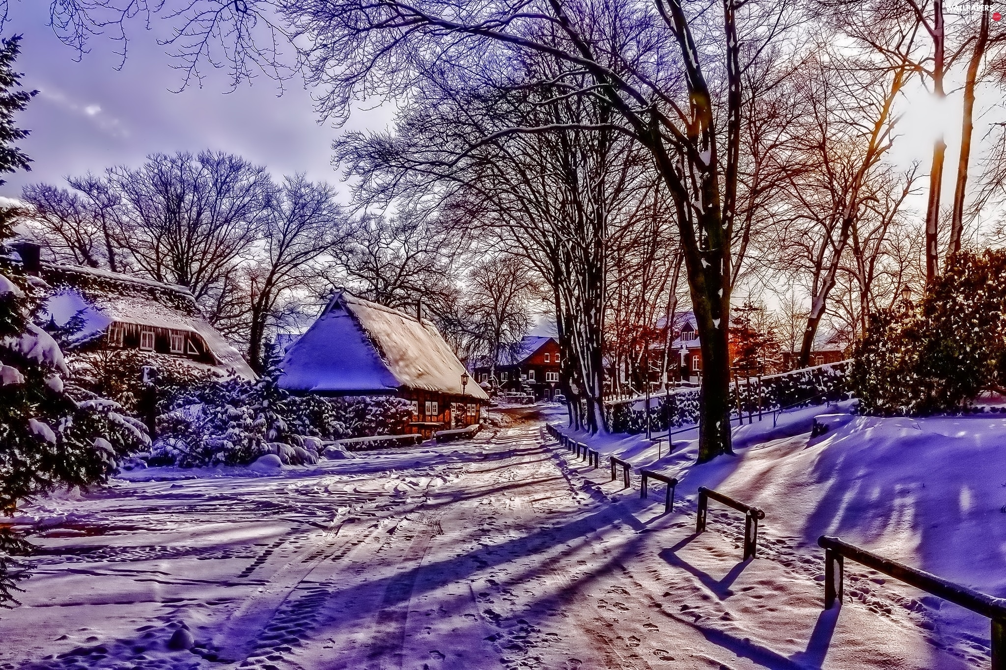 country, Houses, winter, Way
