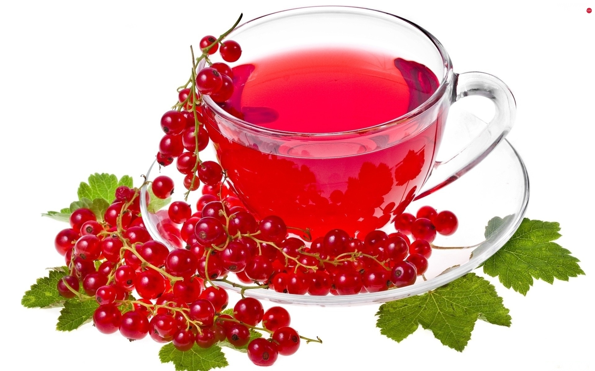 currant, red hot, tea, fruit