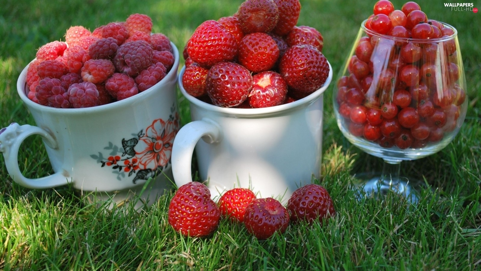 Strawberries, currants, raspberries