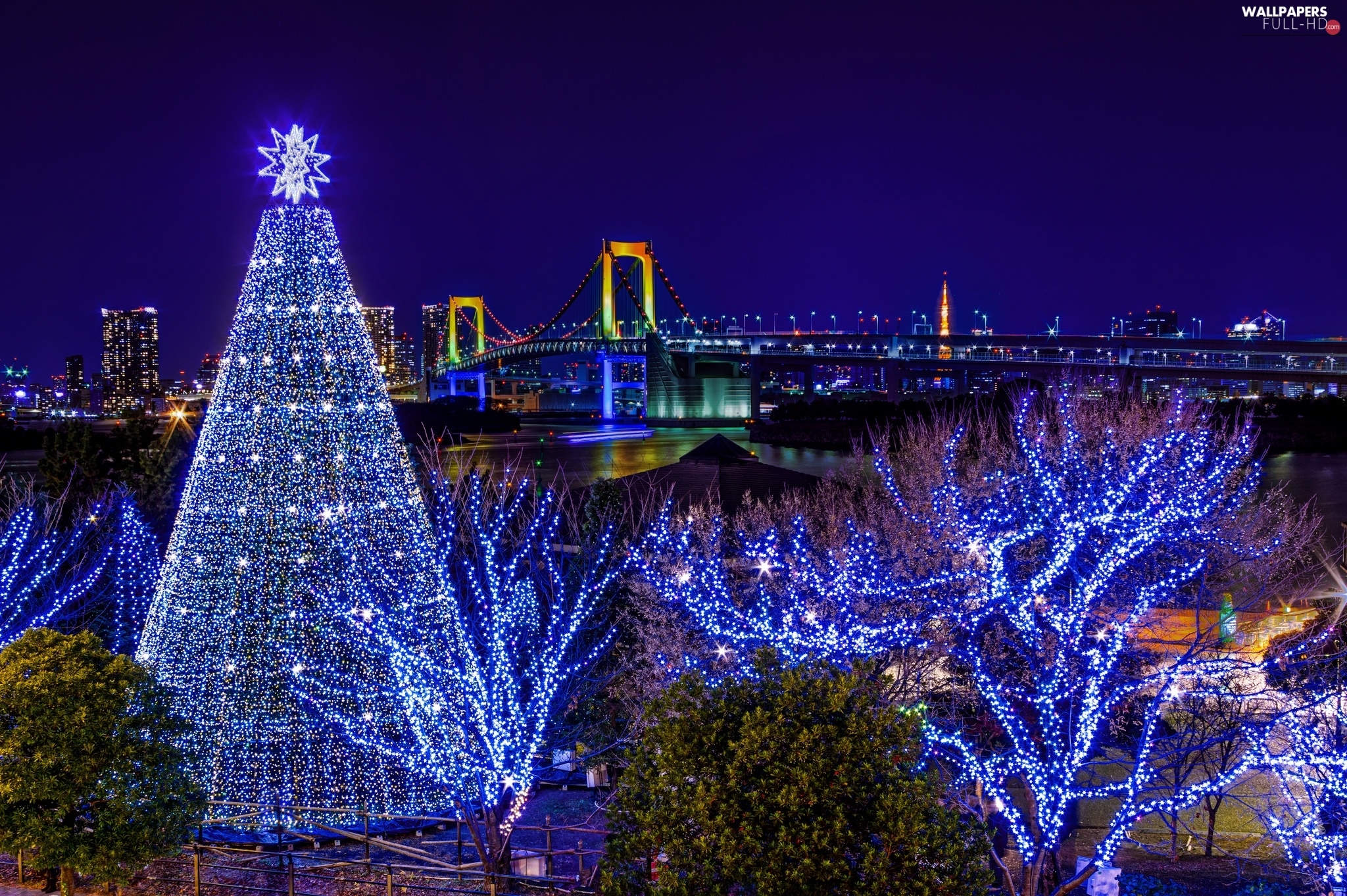Decor, Christmas Tree, Bridge, Tokio, River