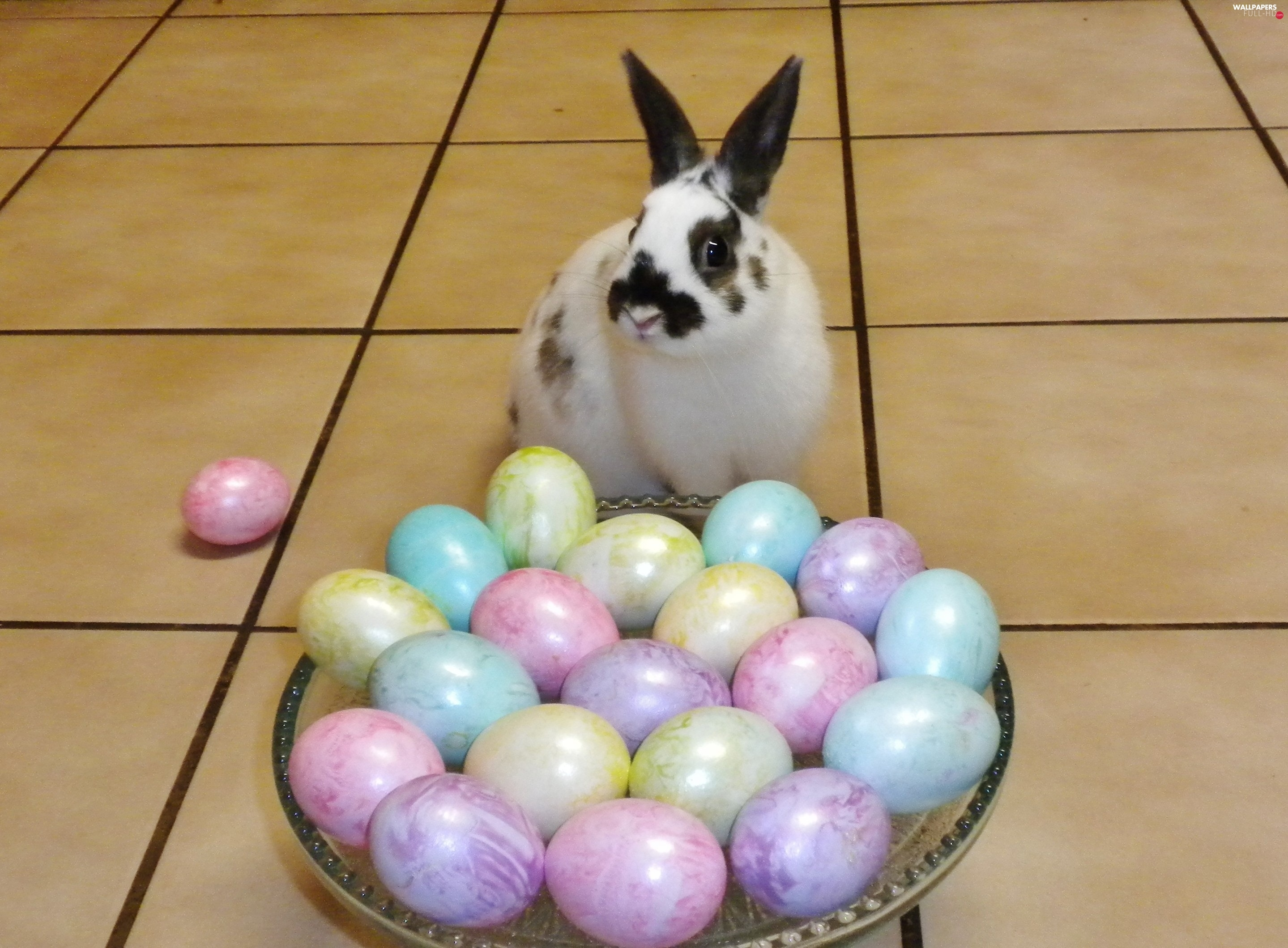 easter, eggs, Rabbit, basket