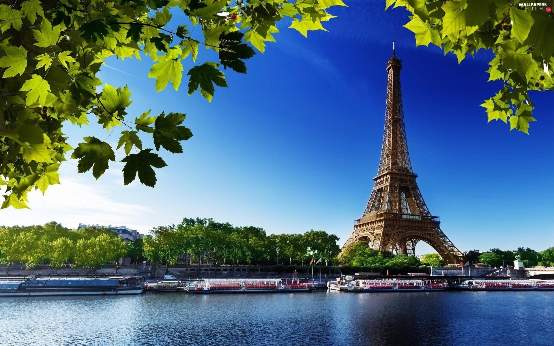 Paris, France, Eiffla Tower