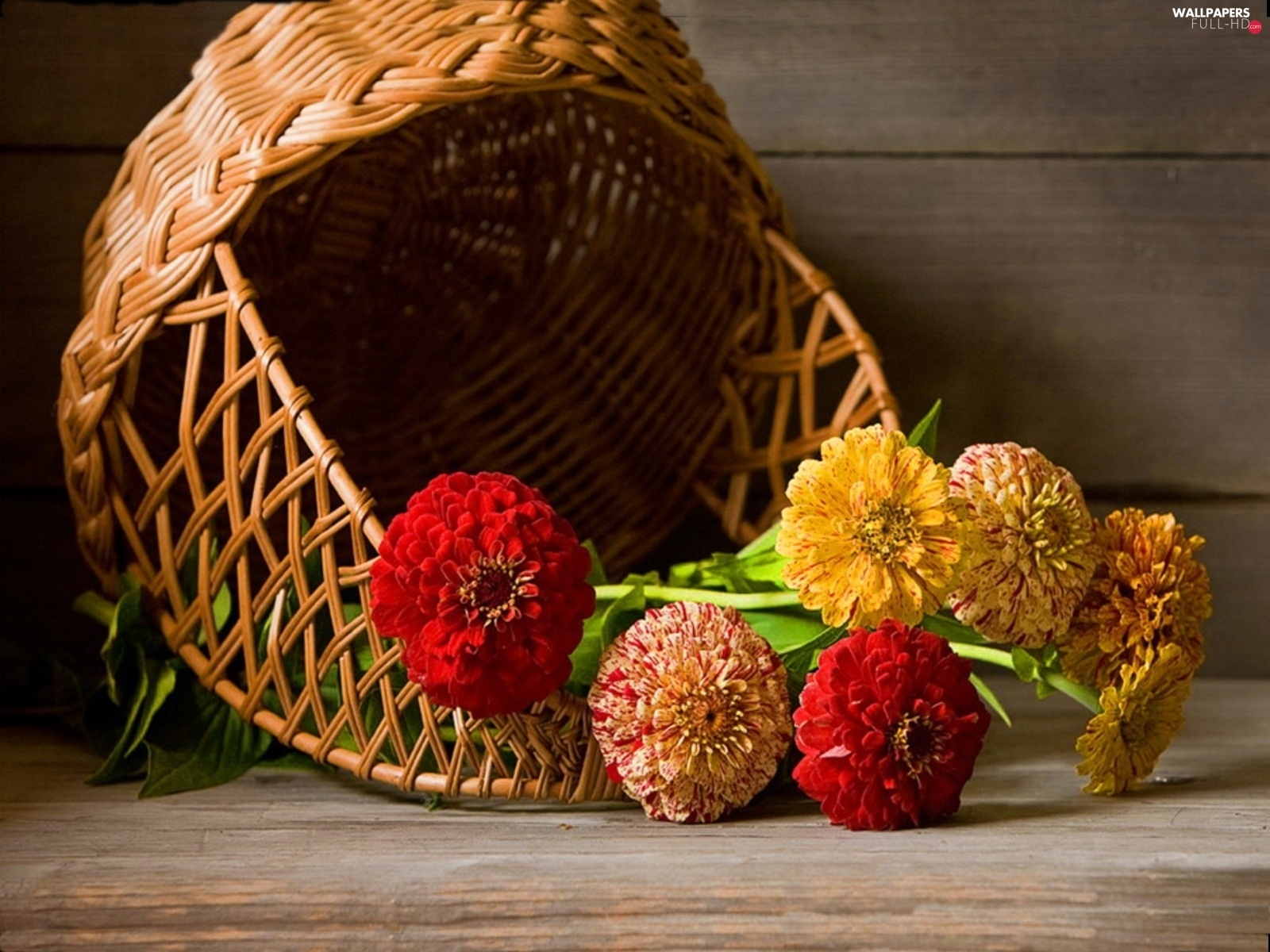 color, Flowers, basket