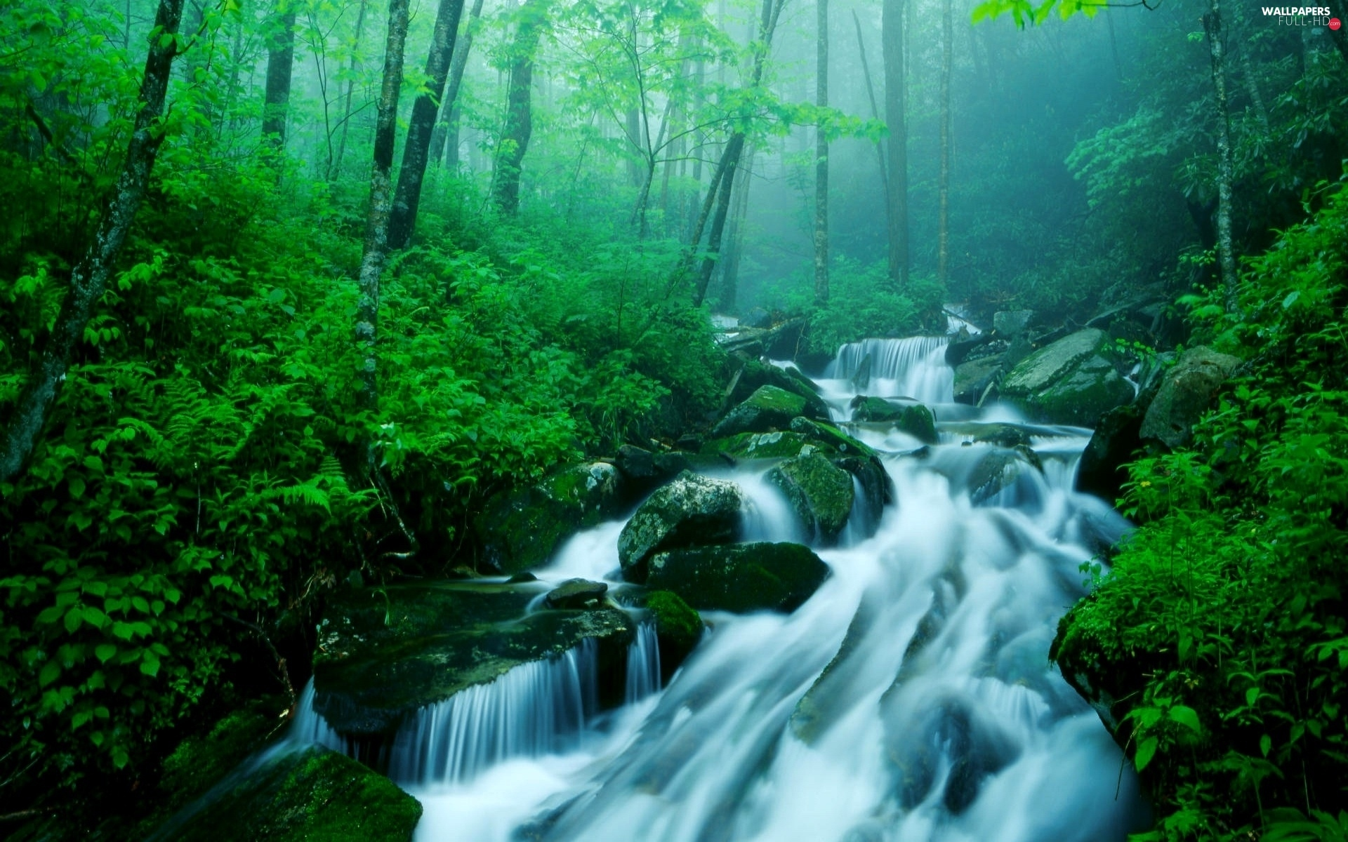 Fog, Stones, waterfall, forest