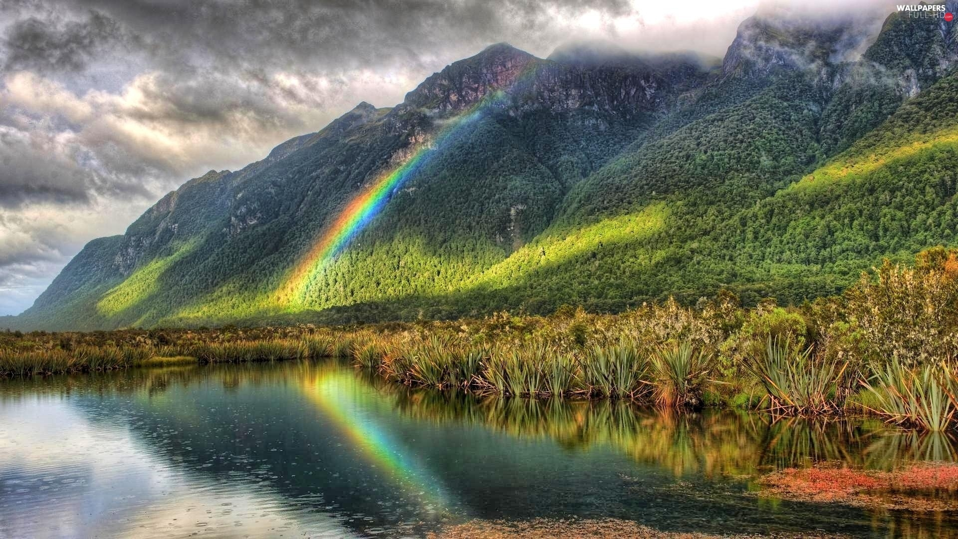 grass, Great Rainbows, lake, Mountains