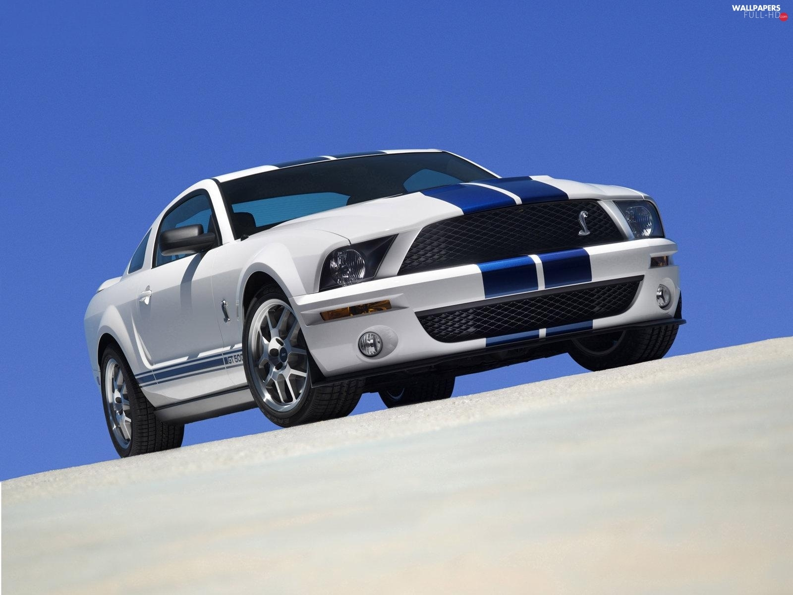 GT500, Ford Mustang, pack, Shelby