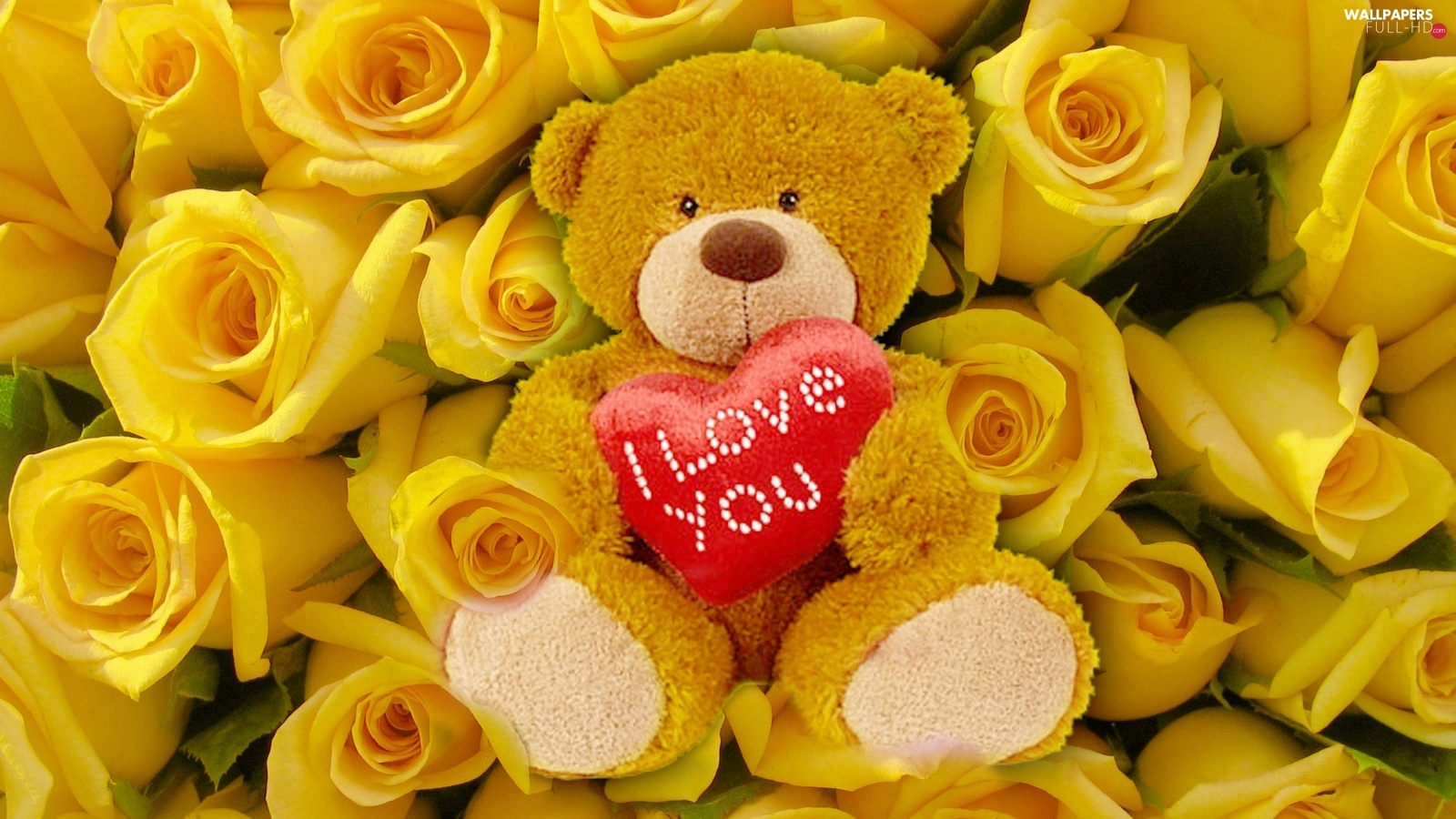 Heart teddybear, teddy bear, Yellow, roses