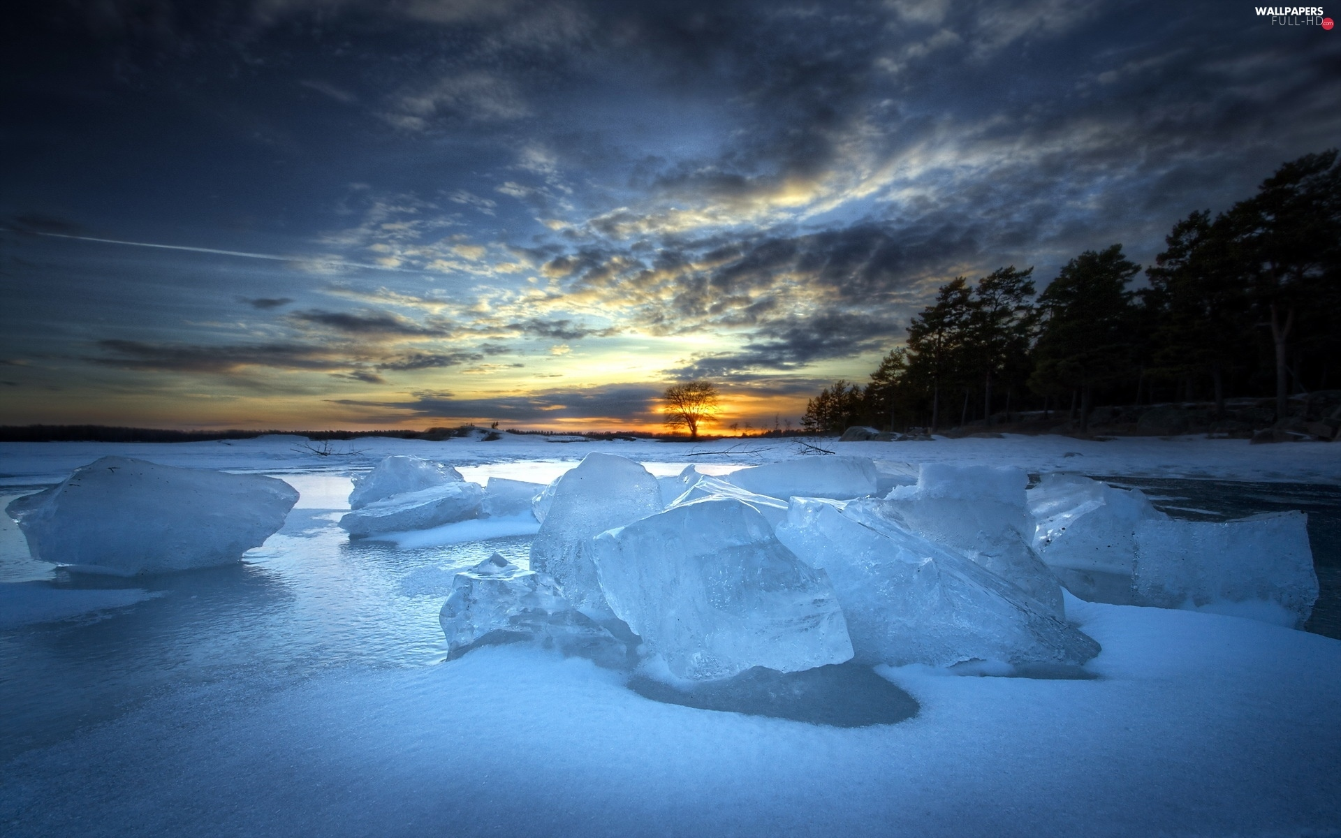 ice, forest, lumps, west, winter, sun