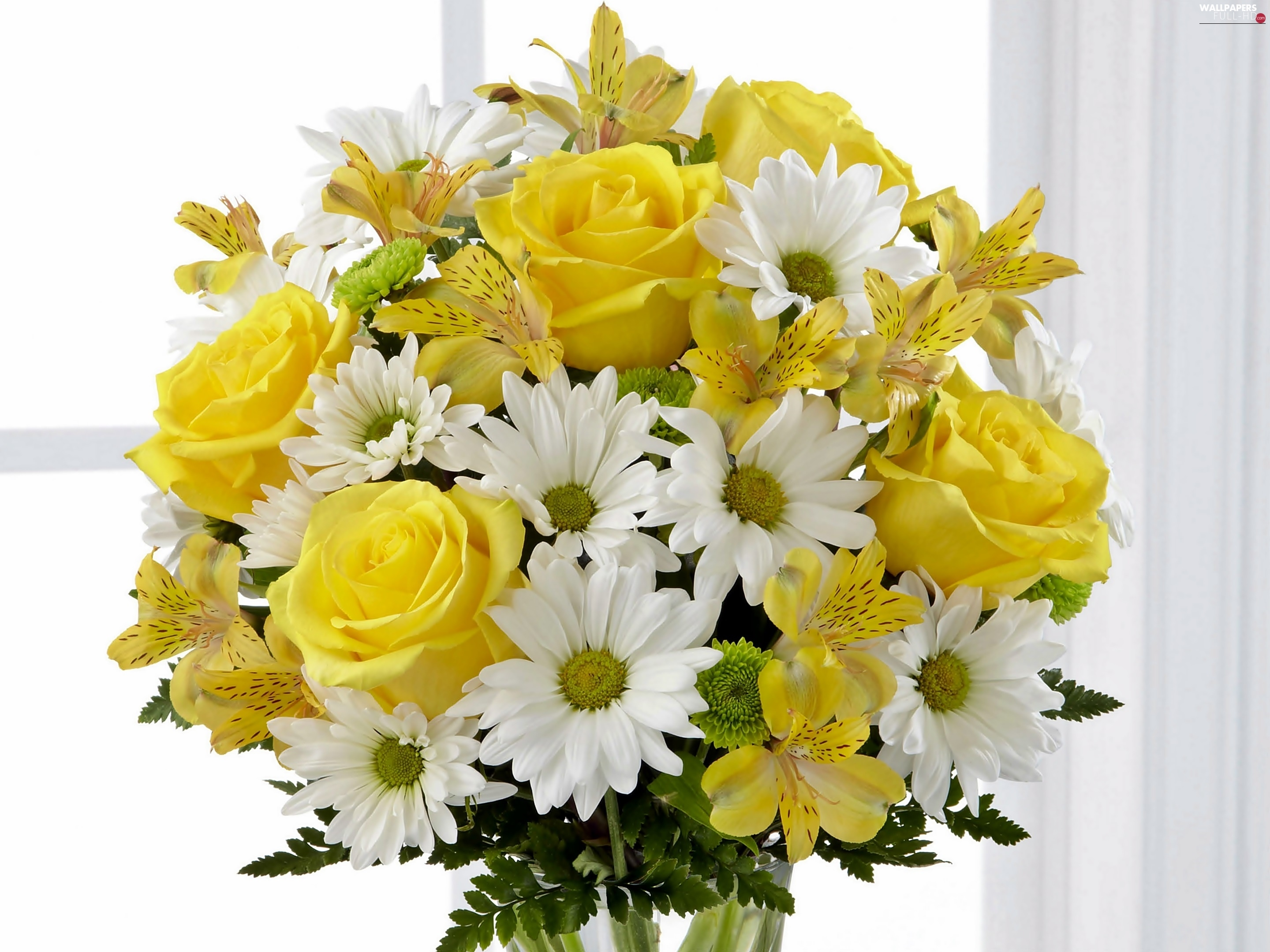 Chrysanthemums, In Window, Alstroemeria, bouquet, roses, flowers