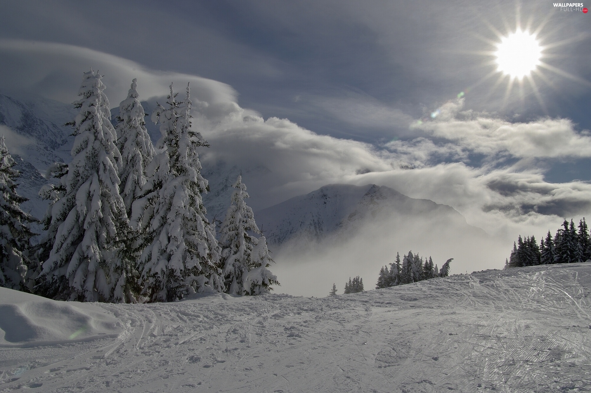 Spruces, Mountains, rays of the Sun, winter, clouds