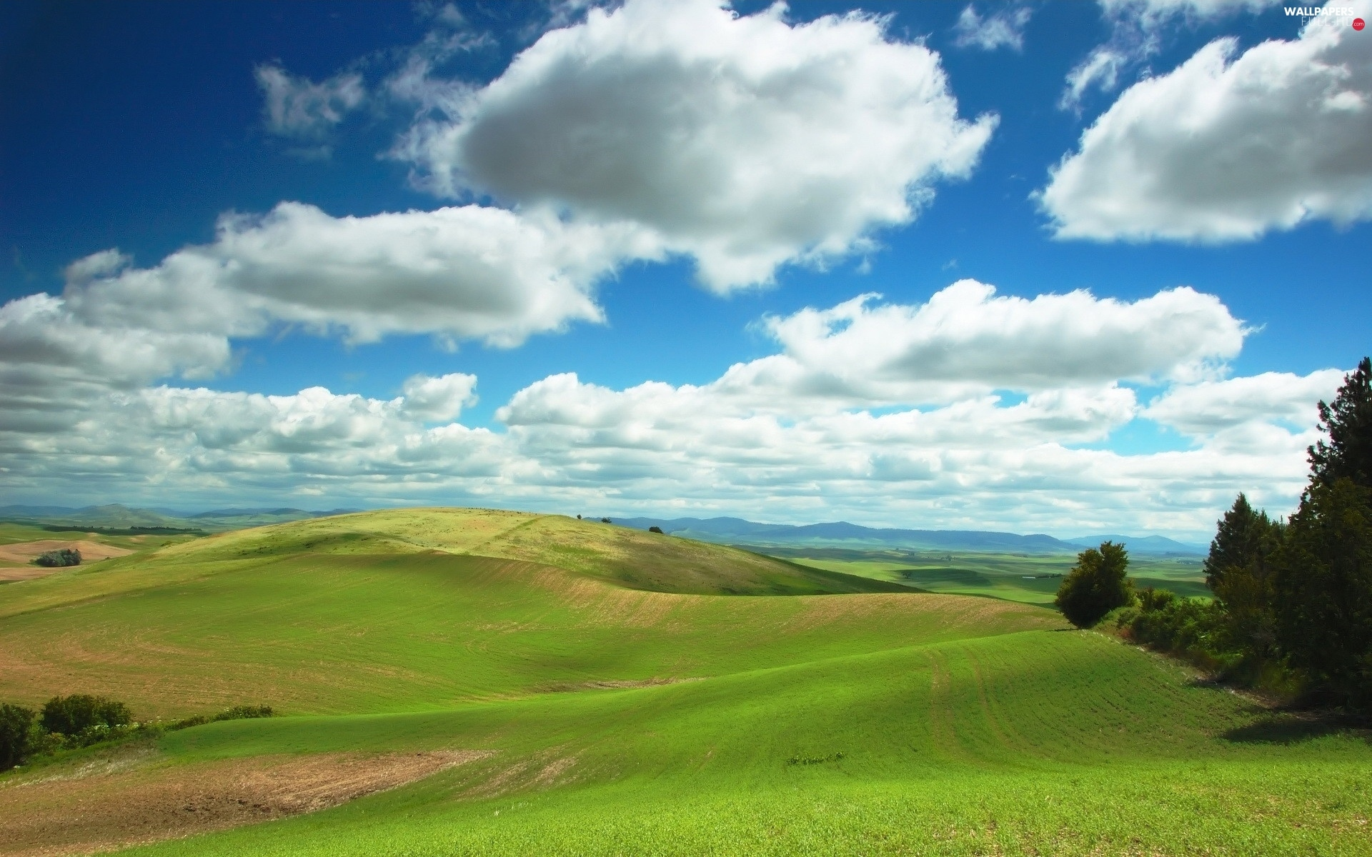 Mountains, trees, viewes, panorama, clouds, field