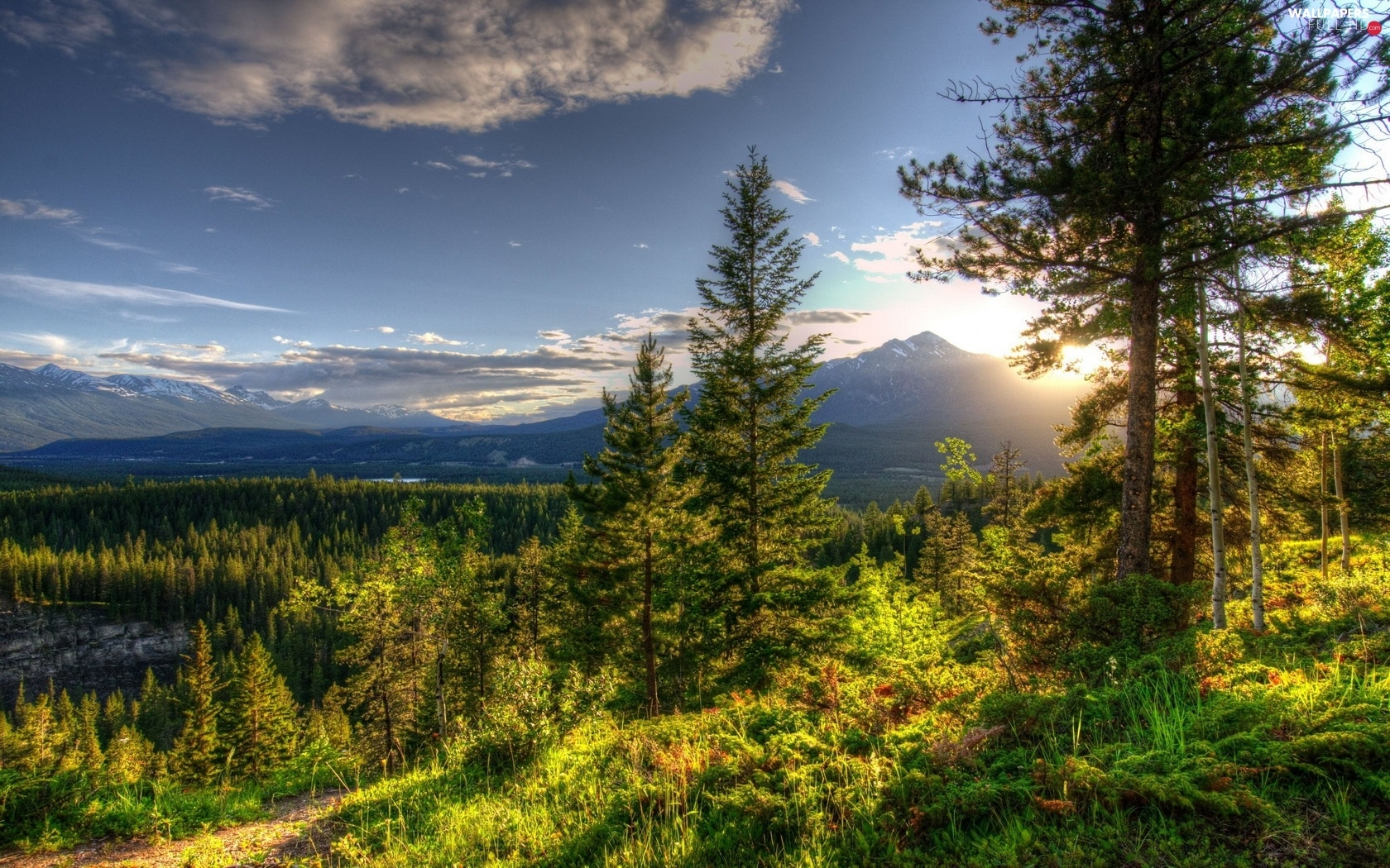 Mountains, rays of the Sun, forest