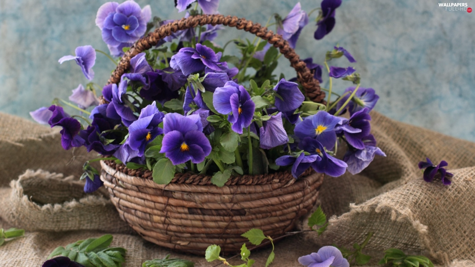 bouquet, pansies, basket