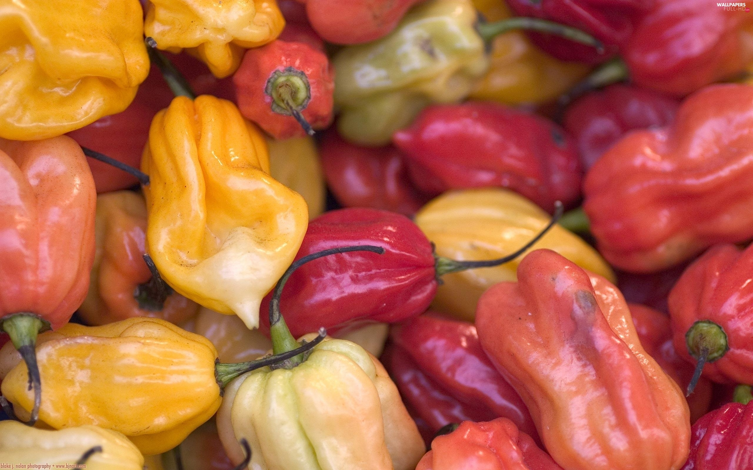 colors, peppers, different