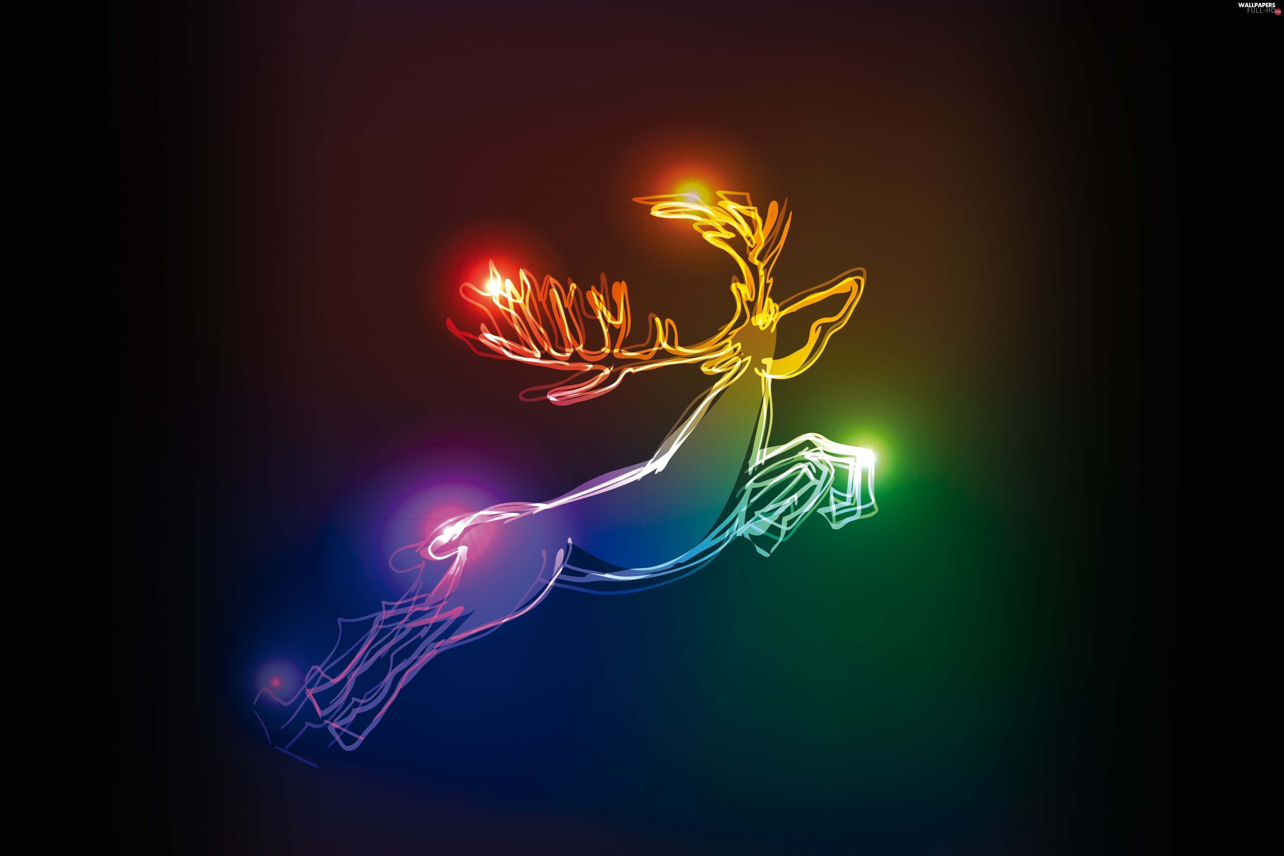 reindeer, color