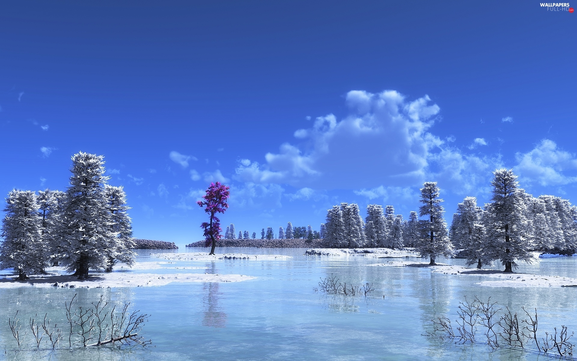 rime, viewes, lake, trees