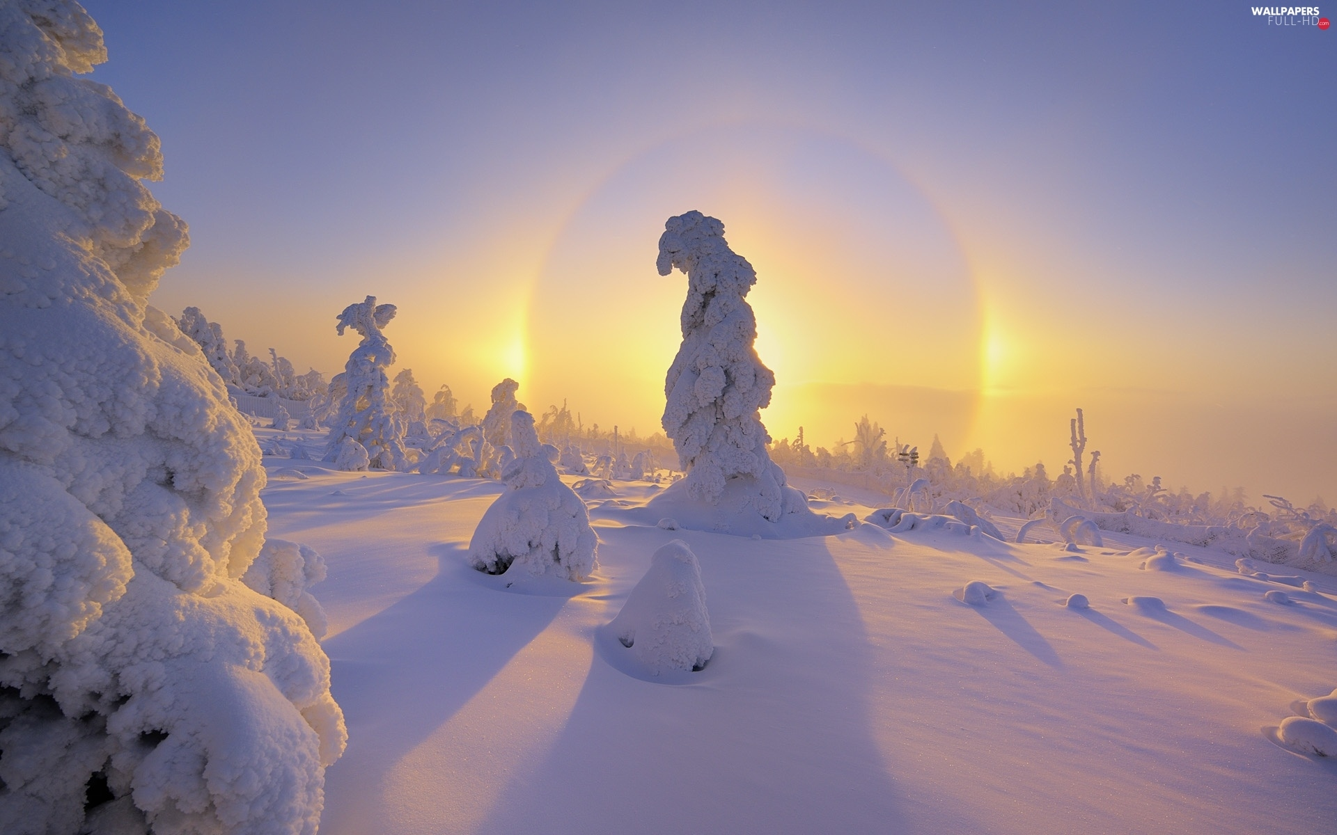 snow, Covered, trees, sun, viewes