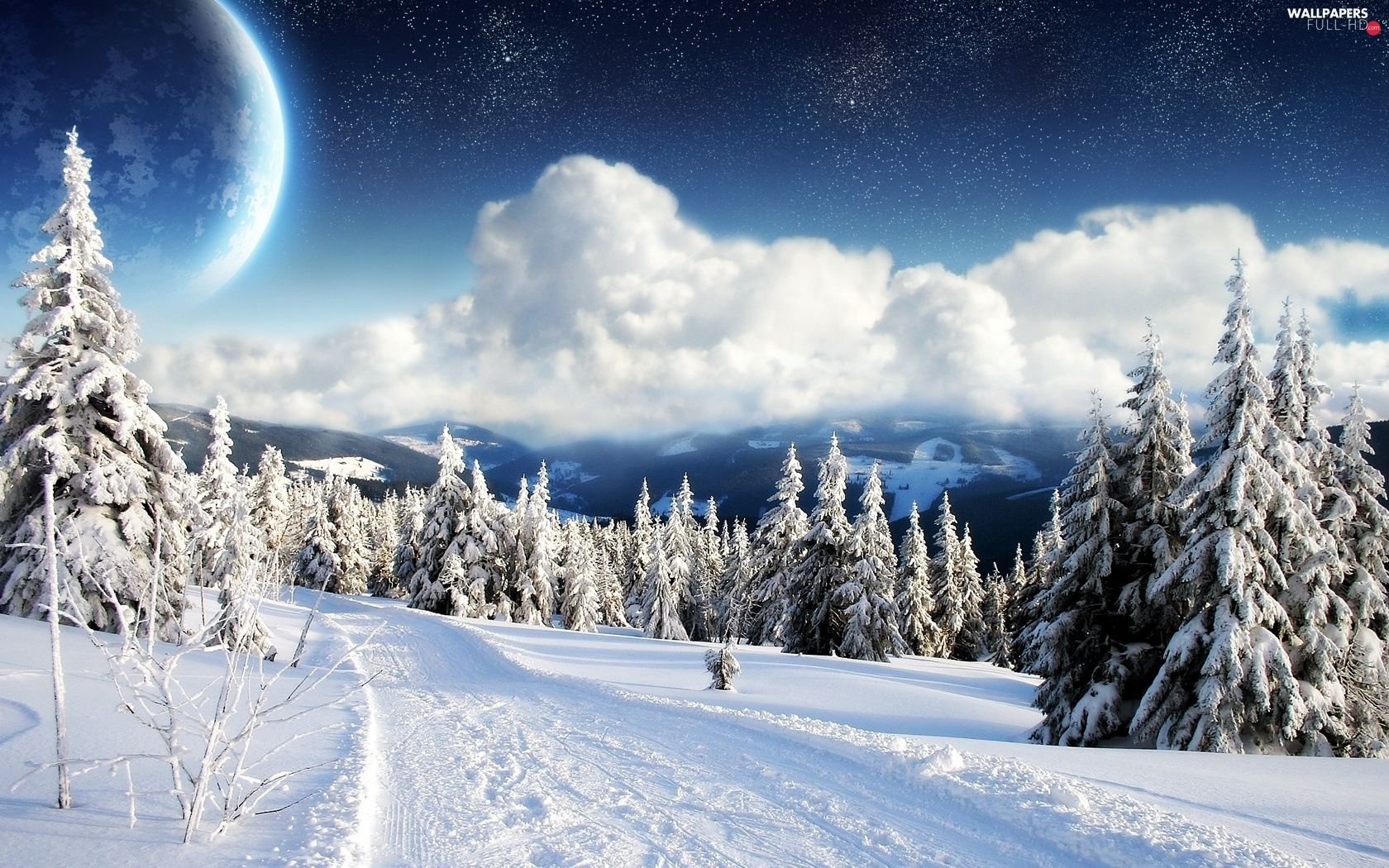 Spruces, Snowy, clouds, Planet