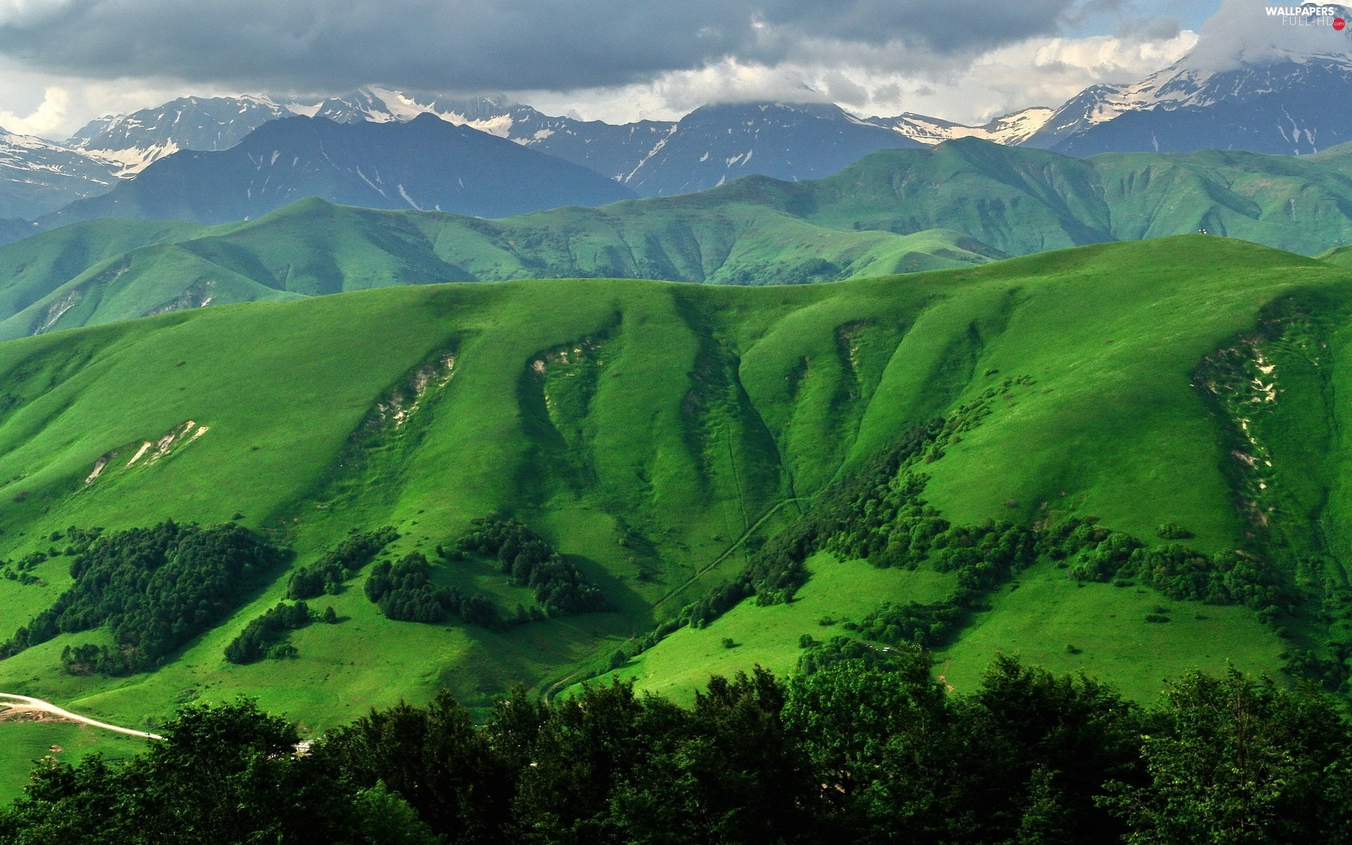 trees, The Hills, Mountains, viewes, green ones