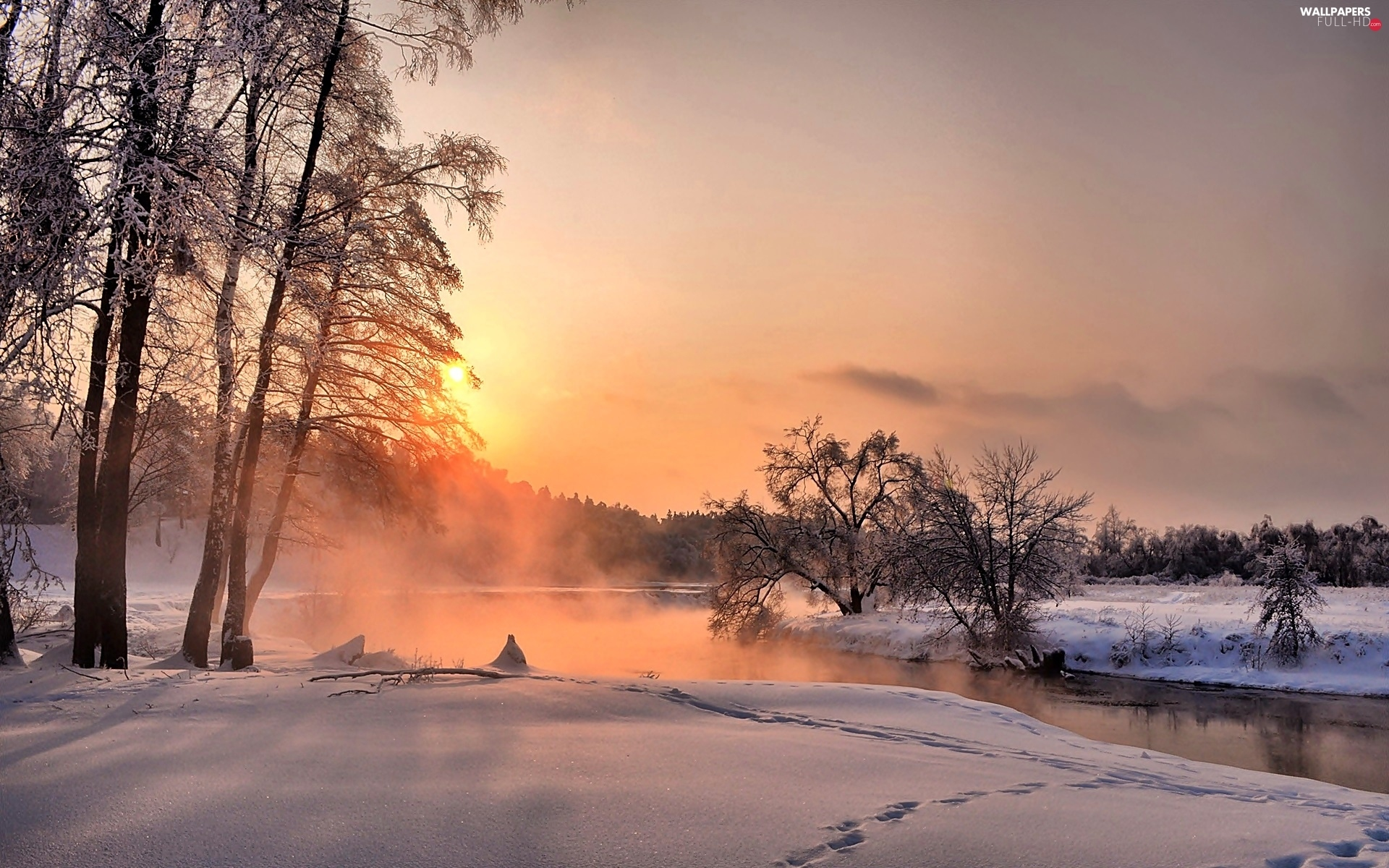 Fog, trees, River, winter, viewes, dawn, forest