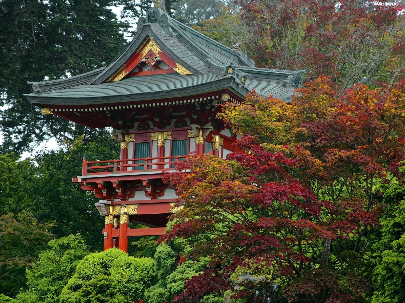 trees, decorating, Japan, house, viewes, Golden