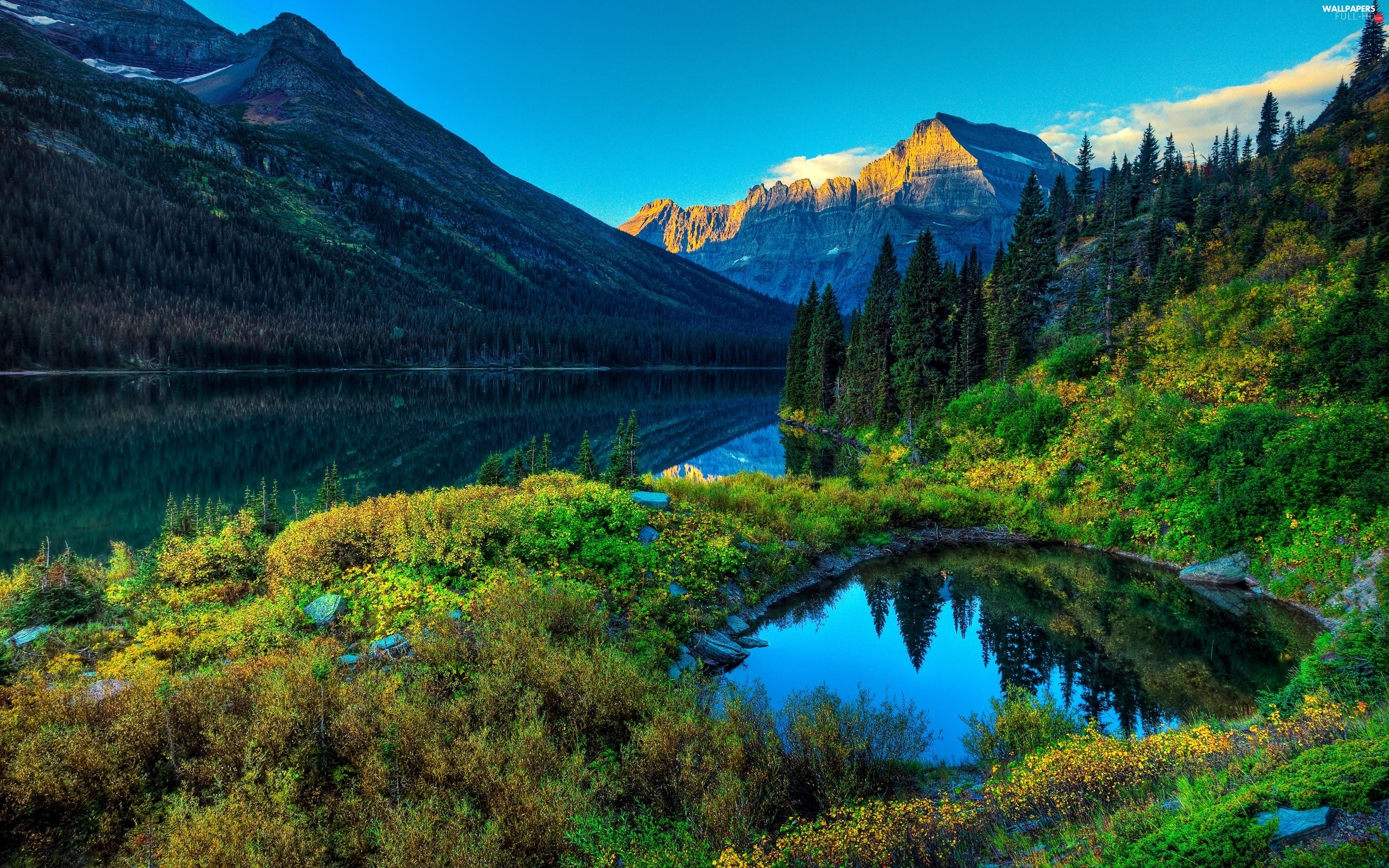 VEGETATION, Mountains, lake, forest