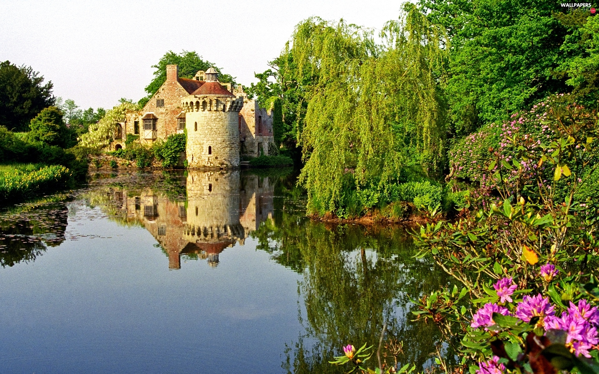 England, viewes, trees, Castle, Kent, lake, Flowers