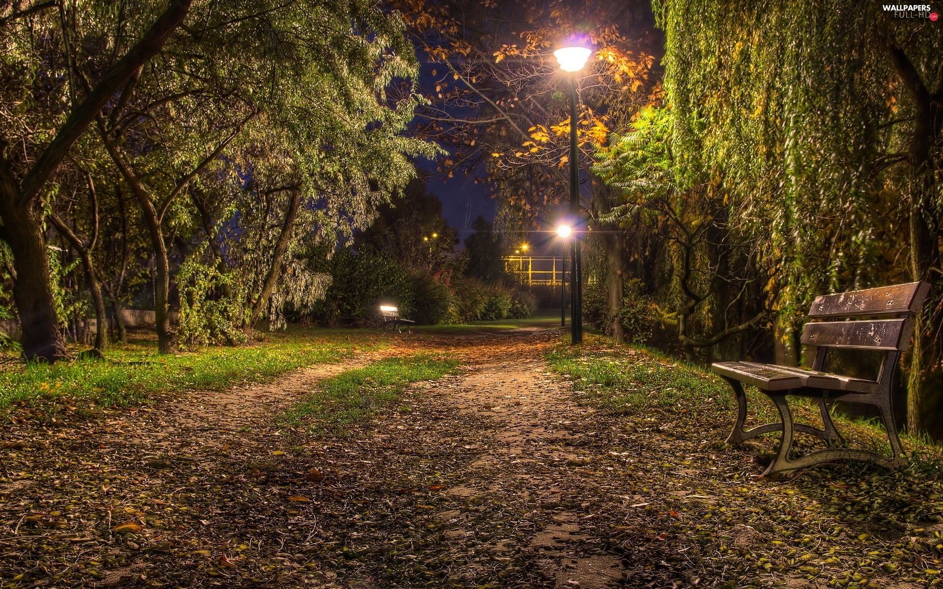 viewes, Bench, trees, Park, Lamps, evening