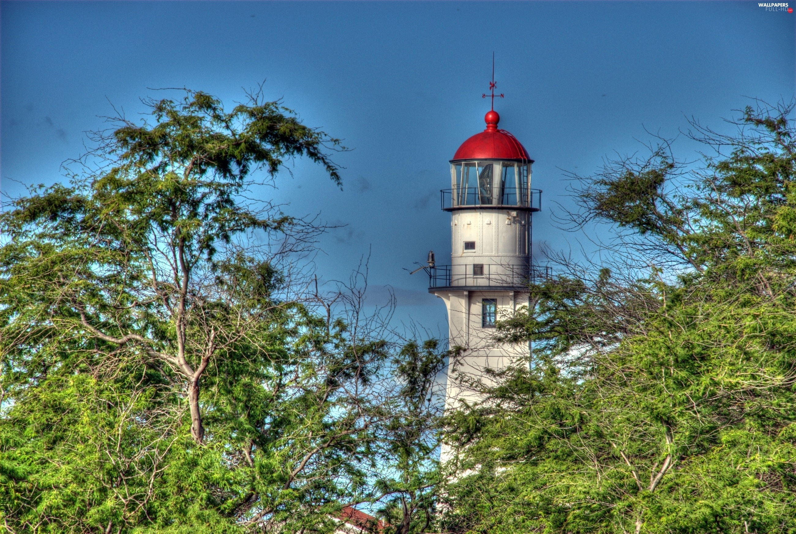viewes, trees, Lighthouse, maritime