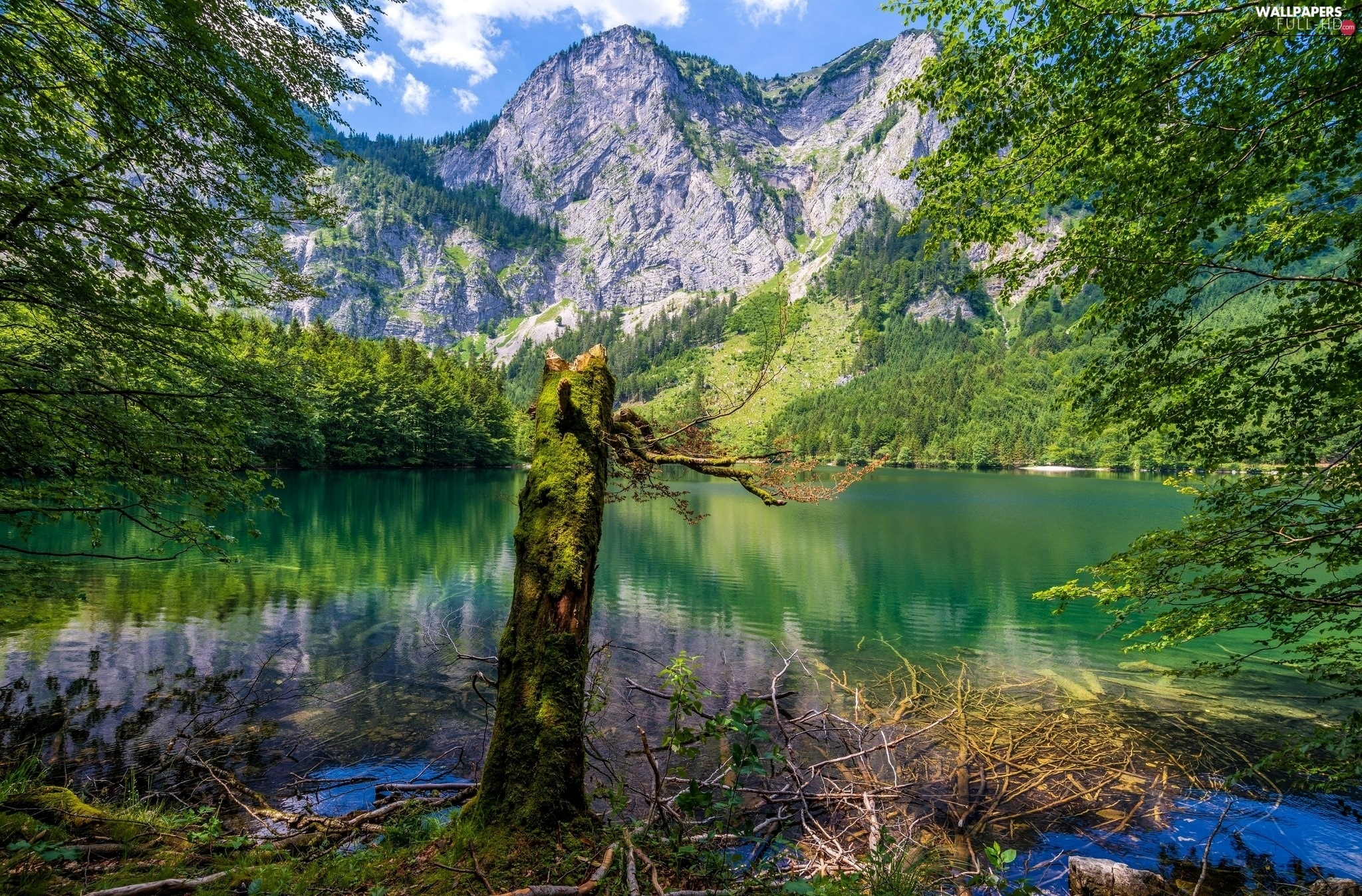 viewes, trees, Mountains, lake