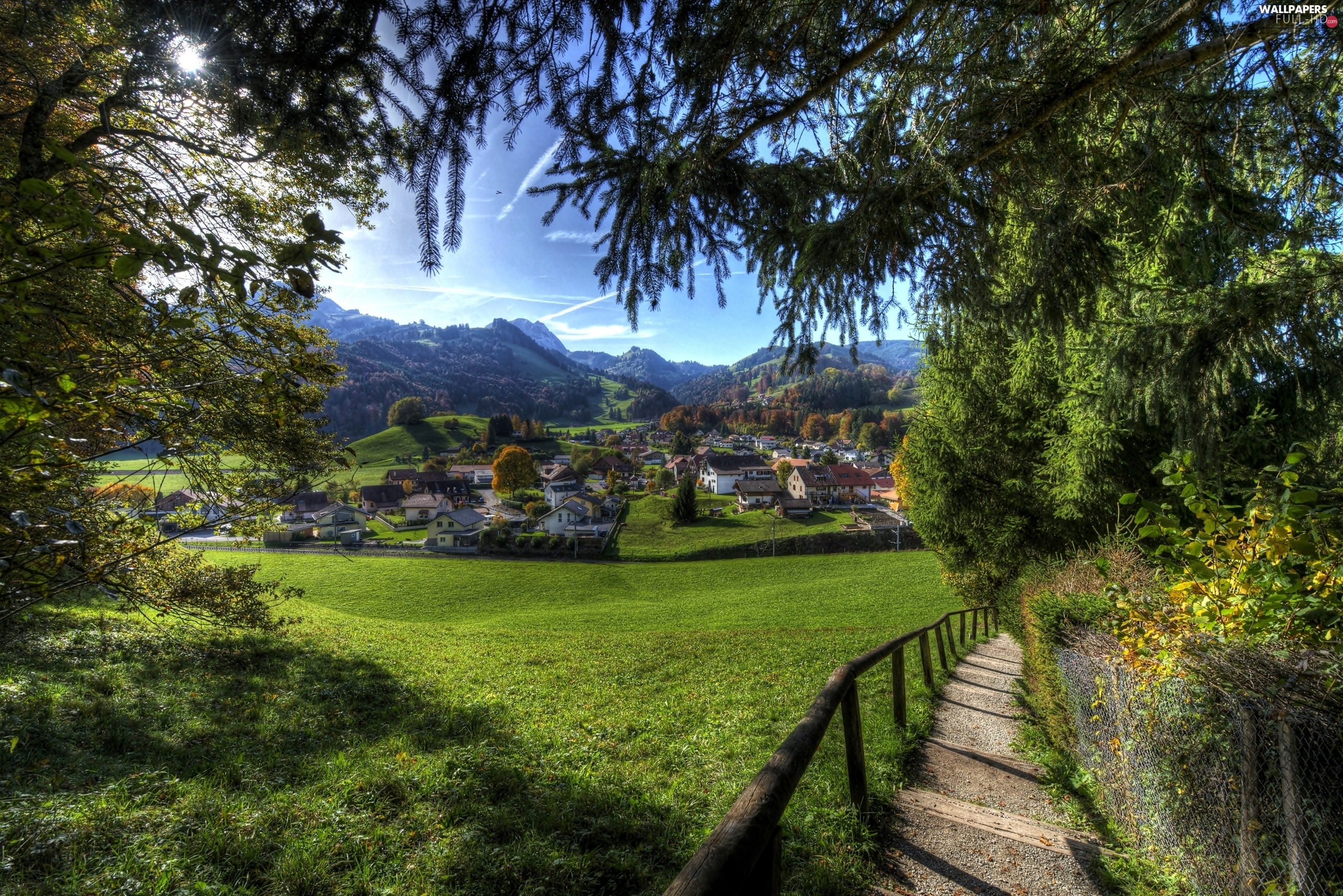 village, Meadow, Houses, Way, Switzerland, forest